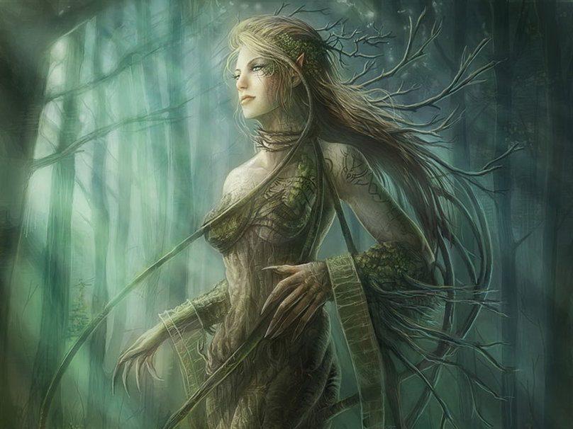 cuales son las Ninfas del bosque